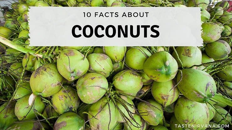 Blog Cover - 10 facts about coconuts