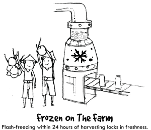Frozen On The Farm