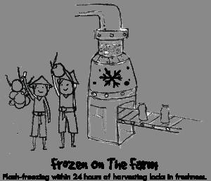 Frozen On The Farm