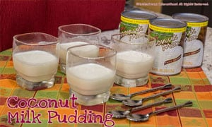 Image of Coconut Milk Pudding
