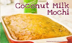 Image of Coconut Milk Mochi