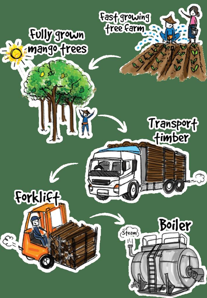 Wood For Fuel Illustration