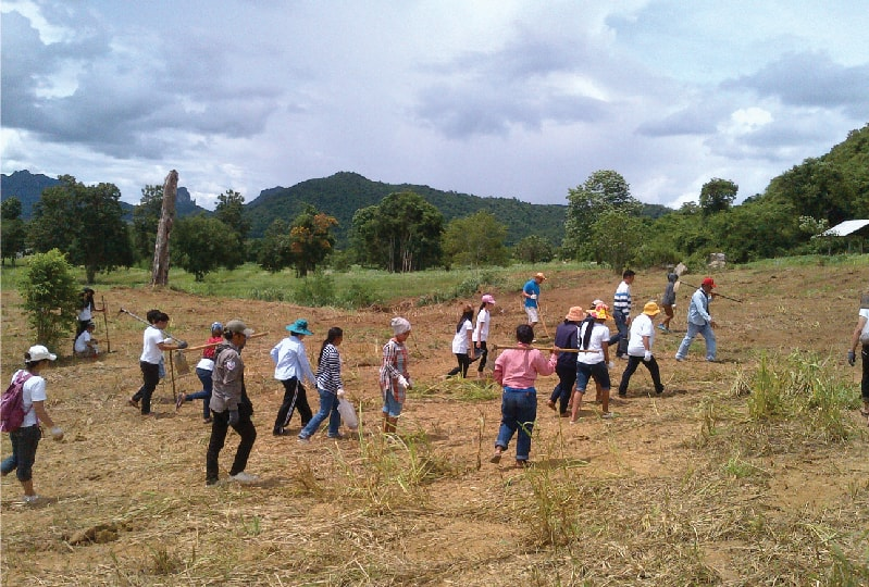 Reforestation by participants