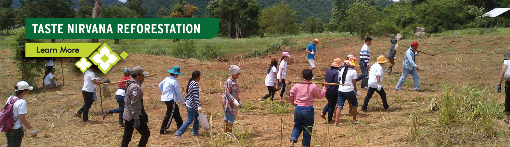 Taste Nirvana Reforestation - Learn More